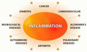 Fighting Inflammation From All Angles